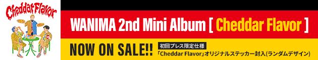 Cheddar Flavor 特設サイト